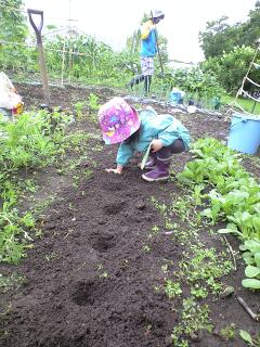 20100810-farm2.jpg